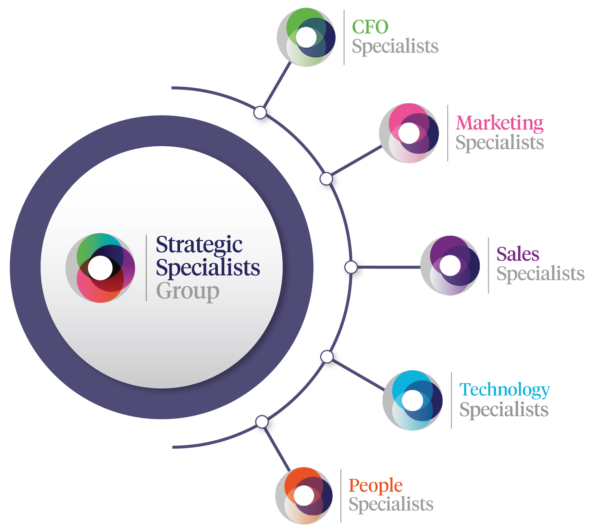 Infographic of Strategic Specialists Group's core consulting disciplines